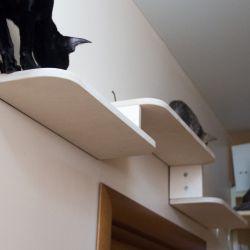 Мастерская мебели для кошек Аватар