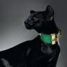 Чёрная ориентальная кошка. Питомник ориентальных кошек в Москве. Купить ориентального котёнка. Фото ориентальных кошек.
